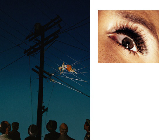 Alex Prager, 7:12pm, Redcliff Ave and Eye #10 (Telephone Wires)