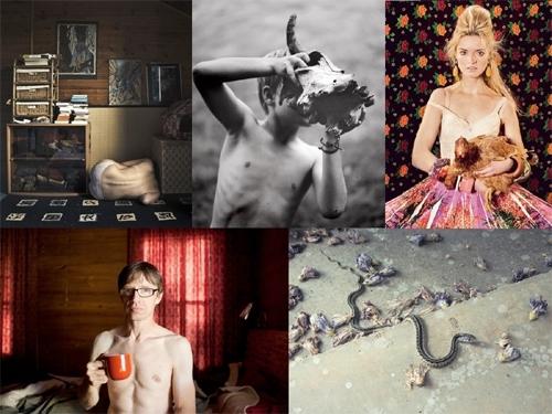 Image Credits Top: Samuel Moulin   Heather Bowes   Isabel Pinto; Bottom: Leon Alesi   Donna Rosser