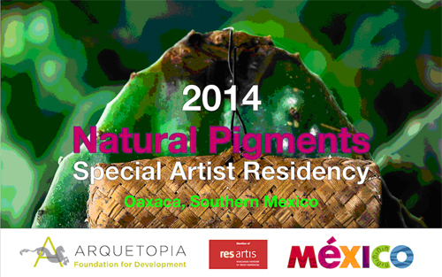 Natural Pigments Special Instructional Artist Residency - Oaxaca