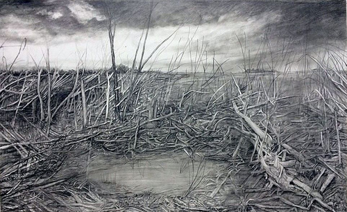 Stacey Cushner, Aftermath 3, 2014, 22 inches x 46 inches, graphite on paper