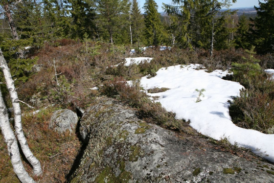 Lara Almarcegui, Mineral Rights, Tveitvangen iron deposit, Norway, 2015