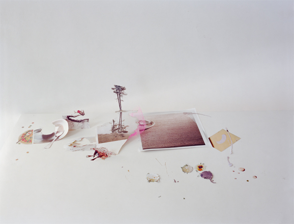 Laura Letinsky, Untitled #40, from the series Ill Form & Void Full, 2013