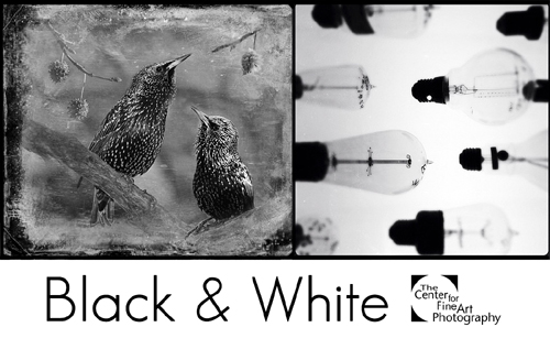 Black & White 2015  | INTERNATIONAL PHOTOGRAPHIC CALL FOR ENTRIES