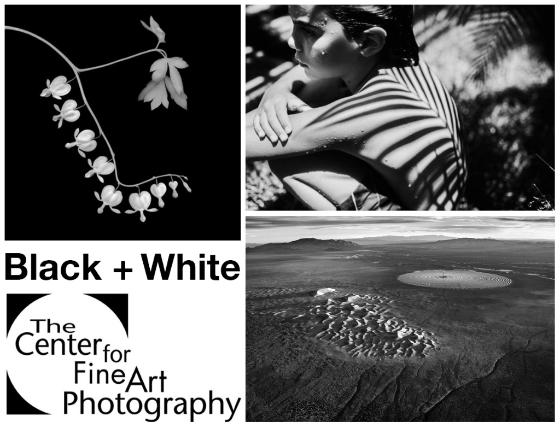 Image Credits: Vicki Reed, Antonio Ysursa, Jamey Stillings