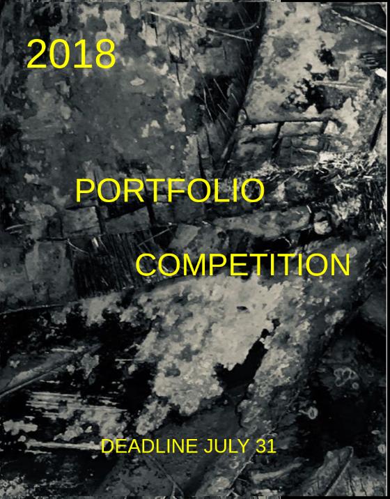 $1,200 PA Portfolio Summer Award -2018